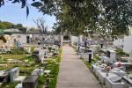 pIDEN declarar emergencia sanitaria, porque  los cementerios públicos de la ciudad están colapsados