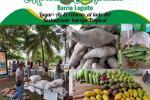 Mercado Campesino en el barrio El Laguito