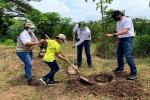 Incentivos para la conservación y protección de los recursos naturales