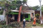 Vendaval afectó viviendas y cultivos en municipios de los Montes de María