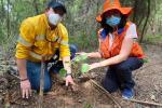 Cerrejón se convirtió en la empresa minera en Colombia que más árboles plantó en 2021
