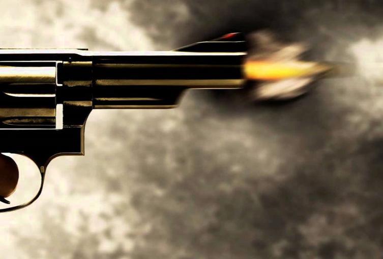 Arma de Fuego Referencia