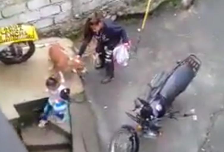 En video quedó registrado el momento en que una mujer maltrata a un perro delante de su pequeña hija