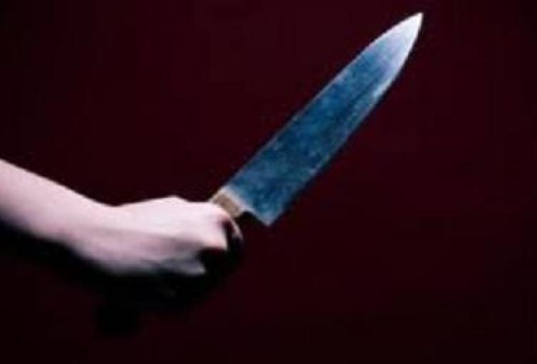 El agresor quien vivía con ella fue capturado y la asesinó porque según él no le daba comida y le faltaba al respeto.