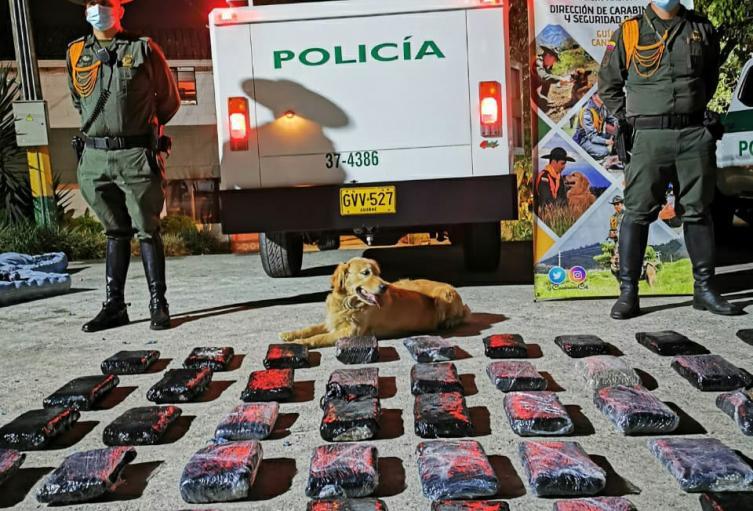 Escondieron 45 kilos de marihuana en colchones en Medellín