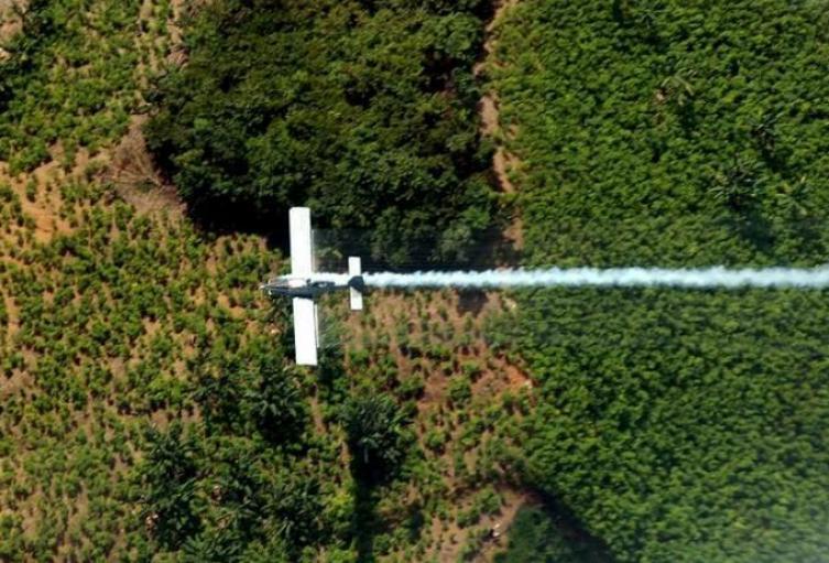 Vuelve la fumigación con glifosato a Colombia: Duque ya firmó el decreto