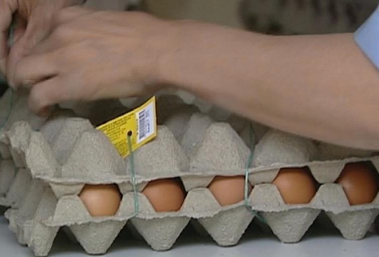Imagen referencial huevos.