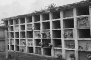 Abandonan dos fetos en la puerta de un cementerio en Medellín
