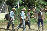 Las familias campesinas llegan de Tarazá a Medellín es búsqueda de albergues temporales.