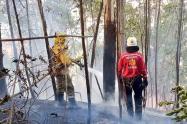 En Medellín, han atendido 196 incendios forestales este año