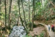Ciudadanía casi lincha a presunto ladrón en el parque Arvi de Medellín