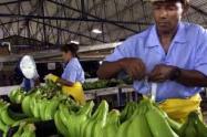 """Augura destacó el estricto protocolo de bioseguridad y calificó a los trabajadores como """"héroes""""."""