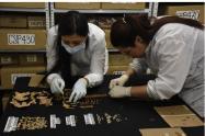 Laboratorio de Osteología de la Universidad de Antioquia.