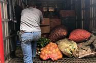 Personas que acaparen alimentos o medicamentos podrían pagar nueve años de prisión