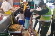 La policía incautó 80 kilos de pescado en operativo sorpresa en locales del centro de Medellín