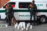 Perros antinarcóticos descubren 145 kilos de marihuana en Itagüí, Antioquia