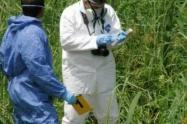Investigan extrañas muertes de dos hombres en el suroeste de Antioquia