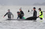 Ballenas atrapadas