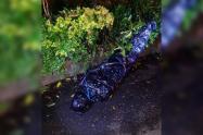 Macabro hallazgo, encuentra en Medellín cadáver envuelto en bolsas y sellado con cinta