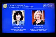 Emmanuelle Charpentier y Jennifer Doudna ganan Nobel de Química 2020
