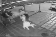 [Video] Golpeó a una mujer por robarle el celular y casi lo linchan en Envigado