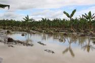 Turbo, Apartadó y San Pedro de Urabá  son los municipios más afectados por esta ola invernal