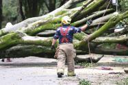 Esta es la primera emergencia que generan las precipitaciones en la ciudad, informó la Alcaldía.