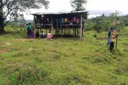 Según la OIA, el ELN estaría resembrando las minas antipersonal en Murindó, Antioquia.