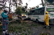 32 viviendas resultaron afectadas por las precipitaciones, informaron las autoridades.