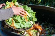 Más de 2.500 millones de toneladas de alimentos se desperdician cada año en el mundo