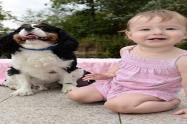 Perro salvó a bebé