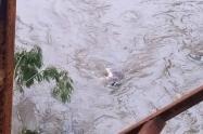 Bomberos de Bello rescataron un cadáver en el río Medellín