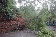 Derrumbes ocasionados por las fuertes lluvias en Antioquia.