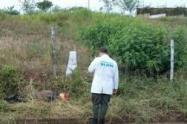 El cuerpo de la víctima fue hallado en zona rural de este municipio del oriente del departamento.