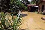 Los cultivos agrícolas, que son el sustento de muchas familias, quedaron bajo el agua.