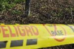 Masacre en Puerto Rondón