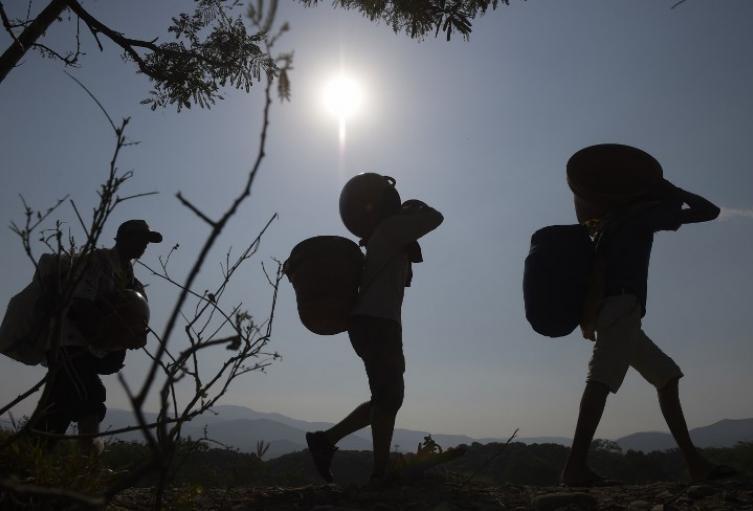 Trochas en la frontera entre Colombia y Venezuela, en Norte de Santander