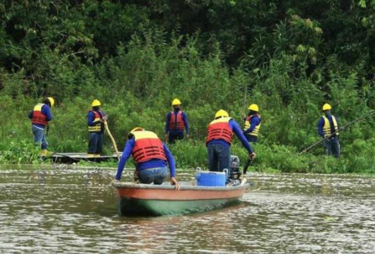 La limpieza de la Ciénaga mantendrá las condiciones ambientales del corredor biológico de especies.