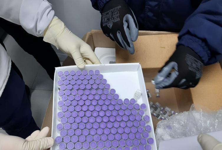 Vacunas Huila