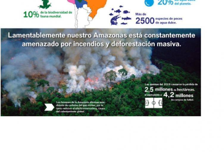 La deforestación y los incendios forestales son las principales amenazas que tiene el Amazonas.