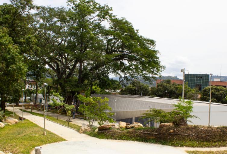 sitio extramural para vacunación Bucaramanga