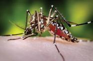 Fallece menor diagnosticado con Dengue.