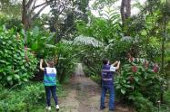 Por medio de actividad ecológica, en Bucaramanga buscan el mayor registro de especies de la región