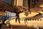 La Aerocivil y la concesión Aeroriente investigarán el hecho.