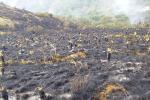 Con Bambi Bucket buscan mitigar incendio en el páramo de Santurbán