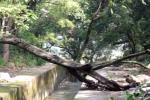 Inundadas 35 viviendas en Bucaramanga por las fuertes lluvias
