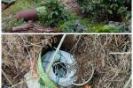 Ejército destruyó explosivos en el Catatumbo