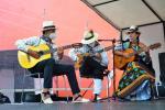 Vélez celebrará una nueva versión de su típico Festival de la Guabina y el tiple