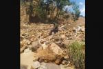 Desprendimiento de roca en Santiago