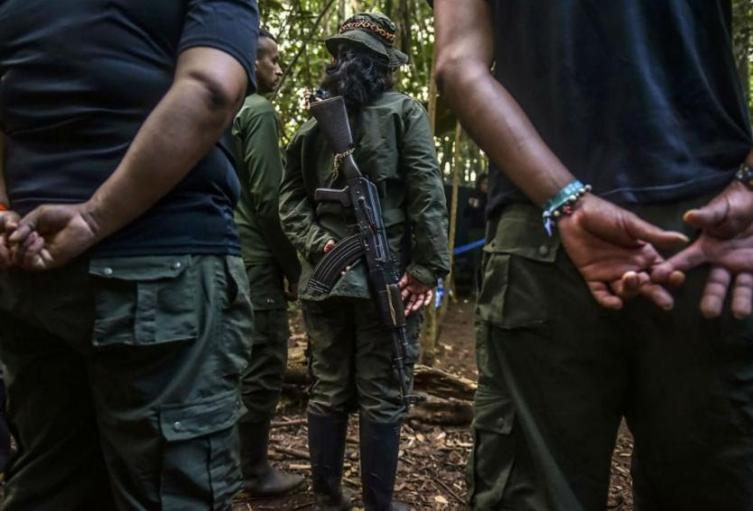 Ley de sometimiento a bandas del crimen organizado a un paso de su reglamentación